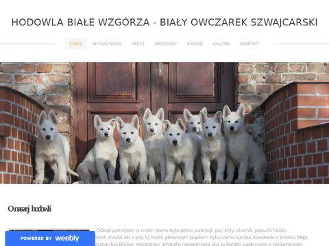 Bialyowczarekszwajcarski.weebly.com hodowla