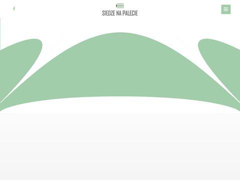 Siedzenapalecie.pl namiot gwiazda wynajem