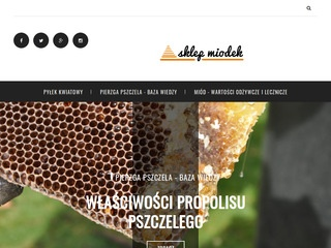 Sklepmiodek.pl – miód podkarpacki