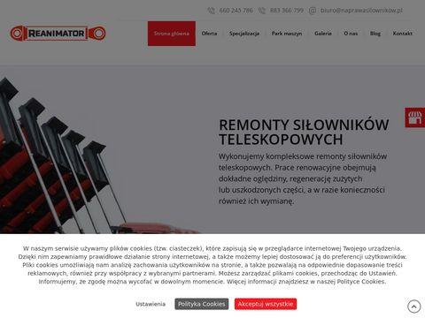 Naprawasilownikow.pl Reanimator