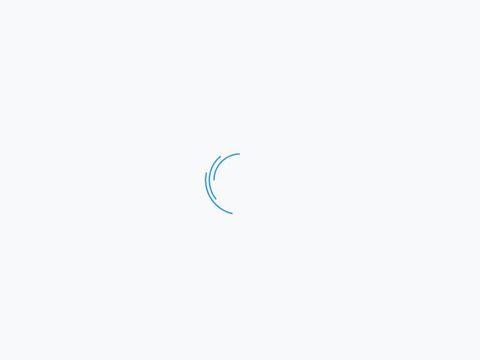 Dhit.pl magnes